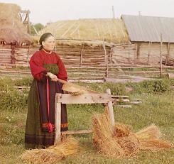 Льняное семя служило всегда и пищей и лекарством